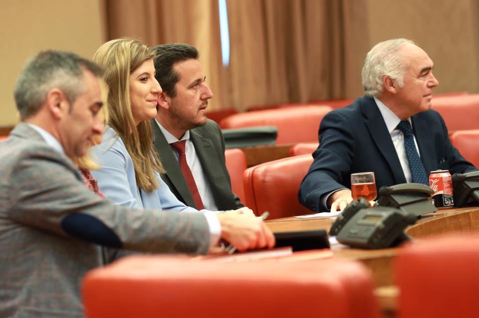 Pedro Acedo, Victor Píriz y Raquel Alonso, diputados del PP en el Congreso