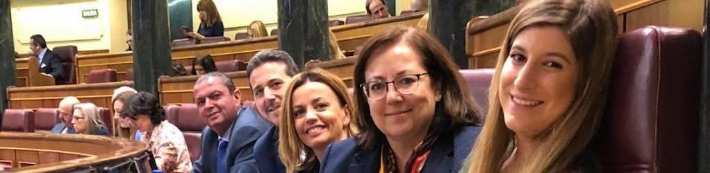 Raquel Alonso, Diputada del PP en el Congreso