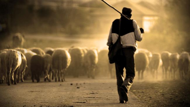 La extremadura rural - Visioncoach