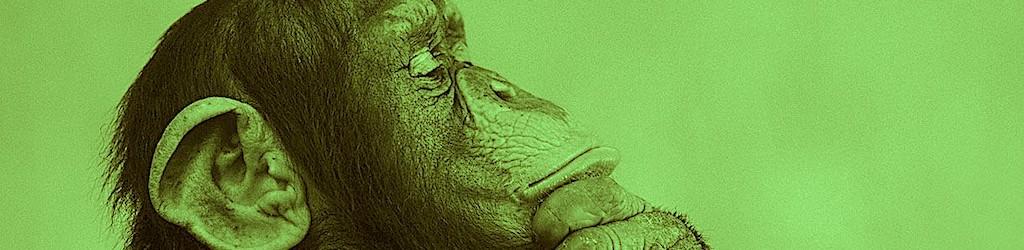 Pensamiento crítico | Alberto Astorga
