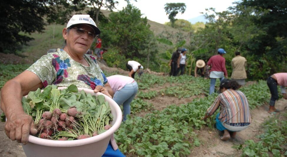 Agricultores en El Salvador;